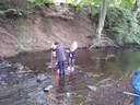 Pond Netting -